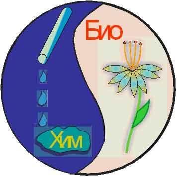 символика естественно-научного направления